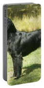 Flat-coated Retriever Dog Portable Battery Charger
