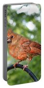 Fledgling Cardinal II Portable Battery Charger