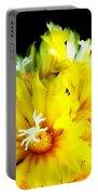Fleurs De Cactus 2 Portable Battery Charger