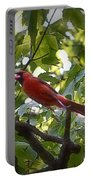 Flight Of The Cardinal Portable Battery Charger