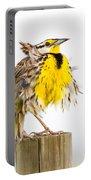 Flluffy Meadowlark Portable Battery Charger