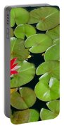 Floating Red Water Lilly Flowers On Pond Portable Battery Charger
