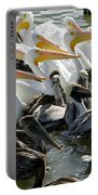 Flock Of Pelicans In Water, Galveston Portable Battery Charger
