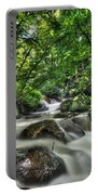 Flooded Small Stream  Portable Battery Charger