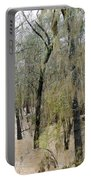 Flooding Dry Creek Portable Battery Charger