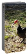 Florida Duck On Green Grass Portable Battery Charger
