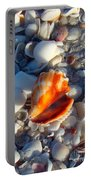 Florida Fighting Conch 1 Portable Battery Charger