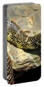 Florida King Snake Lampropeltis Getula Floridana Usa Portable Battery Charger