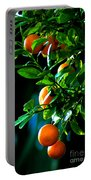 Florida Oranges Portable Battery Charger