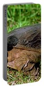 Florida Softshell Turtle Apalone Ferox Portable Battery Charger