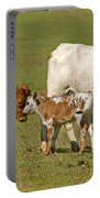 Florida Spanish Cattle Portable Battery Charger