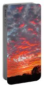 Florida Spring Sunset Portable Battery Charger