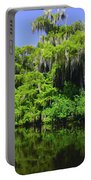 Florida Swamps Portable Battery Charger
