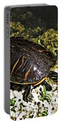 Florida Turtle Portable Battery Charger