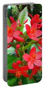 Flower 7 Portable Battery Charger
