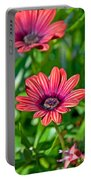 Flower Astra Outback Purple Art Prints Portable Battery Charger
