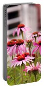 Flower - Cone Flower - In An English Garden  Portable Battery Charger