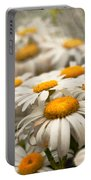 Flower - Daisy - Not Quite Fresh As A Daisy Portable Battery Charger