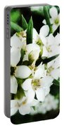 Flower Filled Dreams Portable Battery Charger