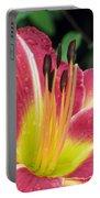 Flower Garden 02 Portable Battery Charger