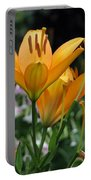 Flower Garden 22 Portable Battery Charger