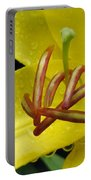 Flower Garden 28 Portable Battery Charger