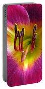 Flower Garden 30 Portable Battery Charger