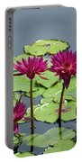 Flower Garden 57 Portable Battery Charger