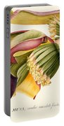Flower Of The Banana Tree  Portable Battery Charger