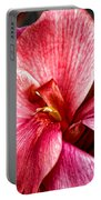Flower Power In Pink By Diana Sainz Portable Battery Charger