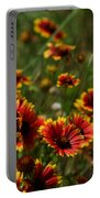Texas Indian Blanket -  Luther Fine Art Portable Battery Charger
