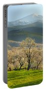 Flowering Almond At The Mountains Portable Battery Charger
