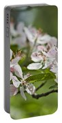 Flowering Crabapple 2 Portable Battery Charger