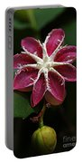 Flowers 12 Portable Battery Charger