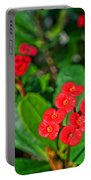 Flowers 2 Portable Battery Charger