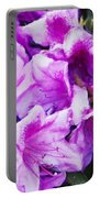 Flowers 2078 Neo Portable Battery Charger