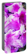 Flowers 2078 Oil Hp Portable Battery Charger