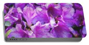Flowers 2078 Pastel Chalk 2 Portable Battery Charger