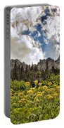 Flowers And Mountains And Sky...oh My Portable Battery Charger
