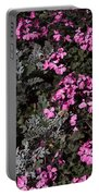 Flowers Dallas Arboretum V16 Portable Battery Charger