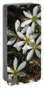 Flowers In The Pot Portable Battery Charger