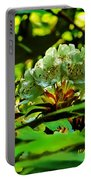 Flowers In The Woods Portable Battery Charger