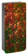 Flowers Of Fire Portable Battery Charger