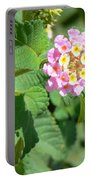 Flowers Of Pink And Orange Portable Battery Charger