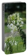 Flowers Pt. 1 Portable Battery Charger