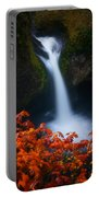 Flowing Into Fall Portable Battery Charger