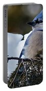Fluffy Blue Jay Portable Battery Charger