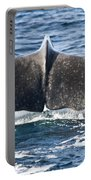 Flukes Of A Sperm Whale Portable Battery Charger