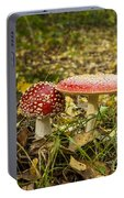 Fly Amanita Portable Battery Charger