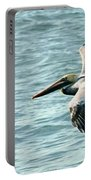 Flying Brown Pelican  Portable Battery Charger